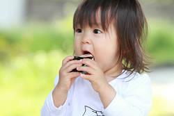 子供の食べ物に過敏すぎる親に教えたい心得│砂場で遊ばせるなら動物の糞に気を付けよう