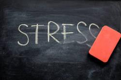 ストレスを飲酒で抑え込むのが危ないワケ│耐性を高めるためには有酸素運動が有効だ