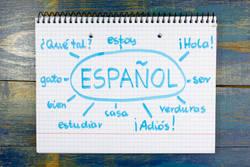 スペインから見て、日本人の生活は「苛酷」だ|私たちは、人に頼ることを知らなすぎる