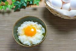 卵を毎日食べて痩せる? 栄養効果を解説