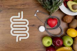 ラクトフェリンと腸の関係について