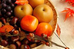 秋の果物を自宅で長持ちさせる保存方法とは?ちょっとしたコツを伝授