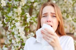 花粉症の原因は「花粉」にあらず? ディセンシアが花粉症対策講座を開催