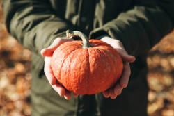 """""""食欲の秋""""を満喫する!アーユルヴェーダの食べ過ぎコントロール法"""