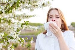 2022年は広範囲で花粉飛散量が少ない「裏年」に!? 来春の花粉飛散量予想