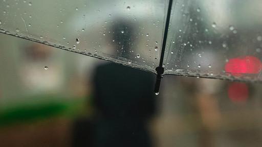 体も心もなんだか重い、そんな雨の日をいったいどう過ごせばいい?(撮影:今井康一)