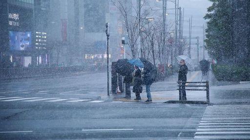 1月22日は首都圏でも大雪に。雪が降った後、どのように歩けば滑らずに済むのでしょうか(撮影:今井康一)
