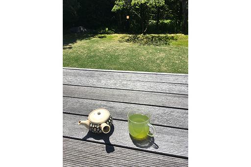 暑い季節は、冷たいお茶を楽しもう!