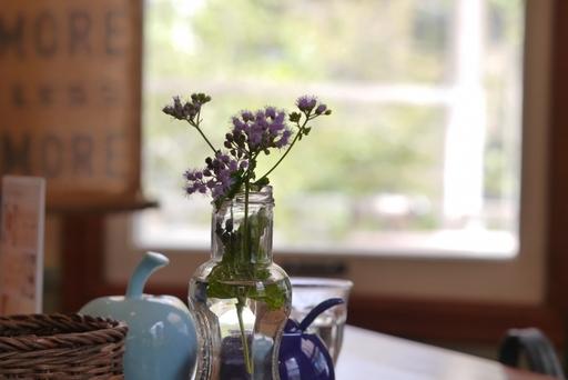 植物があるだけで部屋の雰囲気が和らぐ