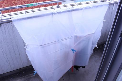 干した洗濯物の上から掛ける! 袋がフワフワ浮いてこないように、洗濯バサミで固定しよう