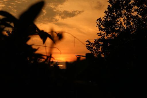 カメラマン堀さんの作品(焦点距離:45、f値:14、露出時間:1/125)