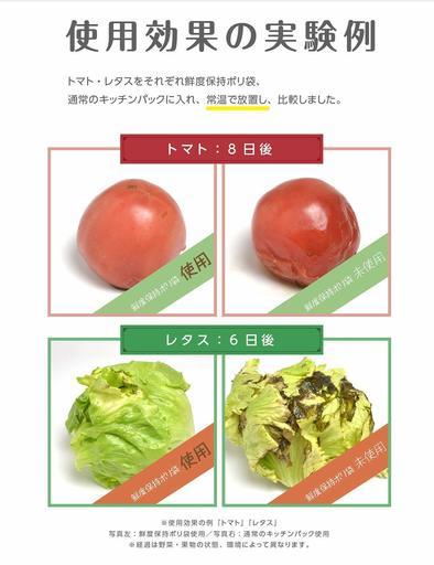 トマトとレタスの保存状態。比較すると一目瞭然だ