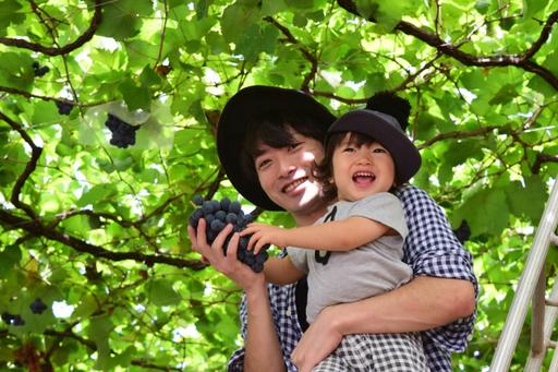 果物狩りは大人も子供も一緒に楽しめる一大イベント!