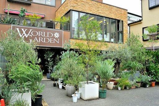 5月は1000組以上が来店したという観葉植物の専門店「ワールドガーデン」(撮影:梅谷秀司)