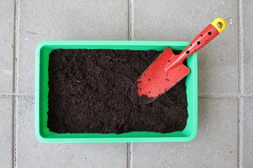 家庭菜園を始めてみよう!