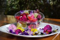 食べたらきれいになっちゃいそう!花を使った華やか料理