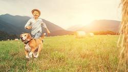 「老けない人」は大人になっても遊んでいる|遊びと仕事は境界線が曖昧なほうがいい