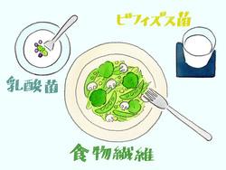 """【特集/現代人のための""""菌活""""】 乳酸菌のチカラで内外美容"""