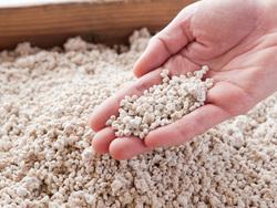 日本の国菌をご存じですか?和食を支える縁の下の力持ち・麹菌