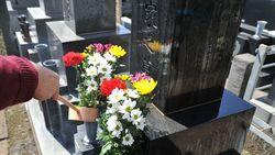「お墓参り」知らないと恥ずかしい基本の基本|トゲや花粉のある花を供えるのは要注意
