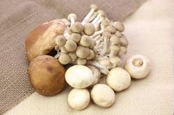 【秋の食材で時短料理】きのこたっぷりアヒージョレシピ。ダイエット中や便秘がちな人におすすめ