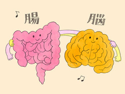 """【特集/現代人のための""""菌活""""】 腸と脳・腸とからだの密接な関係"""