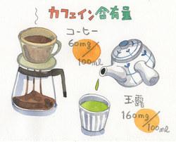 【特集/食とエイジング】 カフェインのとりすぎにご用心