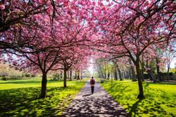 歩くって楽しい!ポカポカあったか 春のウォーキング特集【特集】
