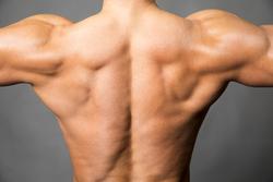 男を磨くダイエット法 第23回 ダイエットは背中を意識すべし! 逆三角形を目指せるトレーニングとは