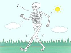 【特集/驚くべき血管の役割!】 ゴースト血管は骨粗鬆症や認知症の要因にも!?
