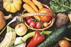 【一人暮らしの節約術】自炊するなら日持ちする野菜を知っておこう!