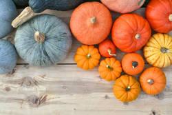 【そろそろ食べたい!】かぼちゃの栄養とおすすめレシピ3選