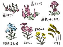白露(はくろ)/秋の七草とともに感じる季節の変化