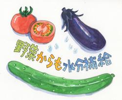 熱中症予防に。野菜や料理からもたっぷり水分補給を