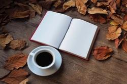 秋の夜長にじっくり読みたいシリーズ小説作品5選