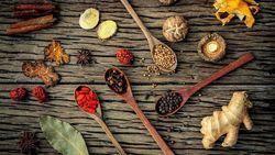イタリア「100歳以上」が多い島の食事健康法|「ポリフェノール」が豊富に含まれる食品がカギ