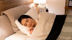 ダニが死滅する9月こそ「寝具の手入れ」の好機だ|喘息やアトピー性皮膚炎のリスクが高まる時期