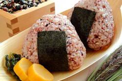 【ココが知りたい!】精白米、発芽玄米、玄米、胚芽米のどれを選べば良いの?
